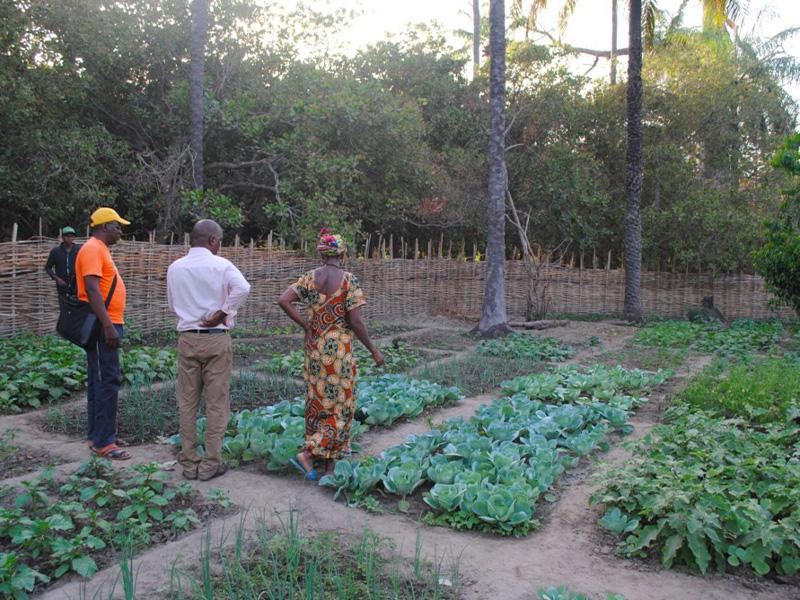 Donne riunite nel progetto a Kuida