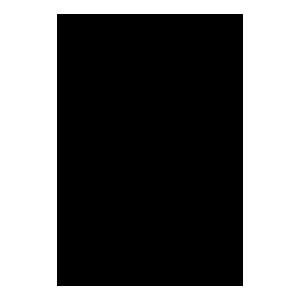 Logo Università U.F.R.J.